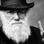 Darwin va a la compra