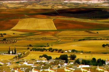 Cuenca_37