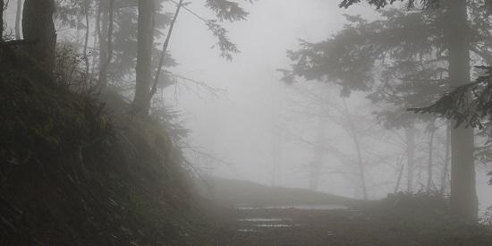 """Un paisaje inquietante es el marco de """"Cazadores en la nieve""""."""