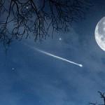 Los ángeles de la noche