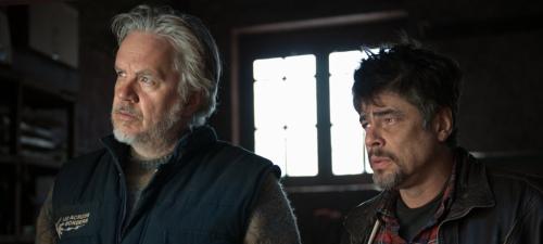 Tim Robbins y Benicio del Toro interpretan a dos expertos cooperantes en Un día perfecto