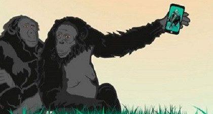 El erotismo como cultura, y creativad saludable. Participa en los IV Premios Bonobo